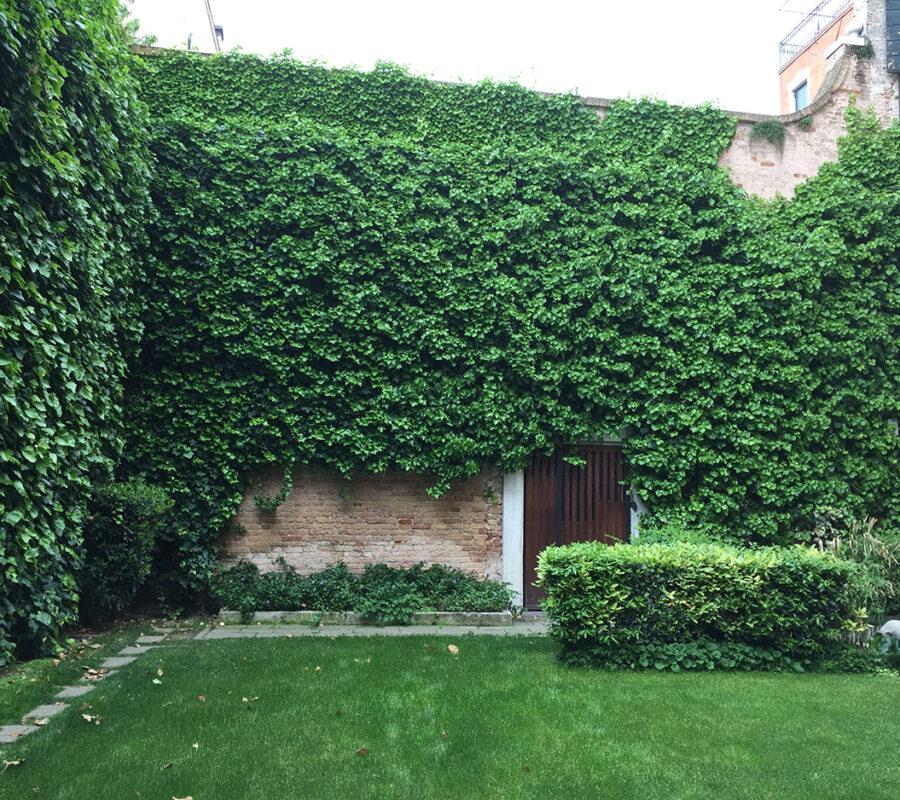 Giardino della Fondazione Querini Stampalia - 3