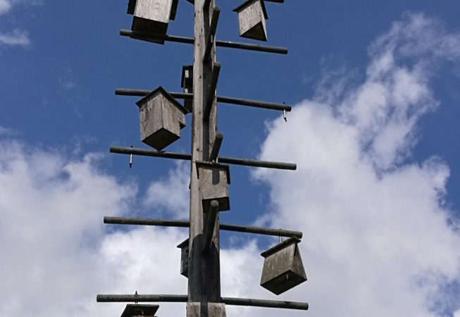 Lione, Parc Gerland - bird houses