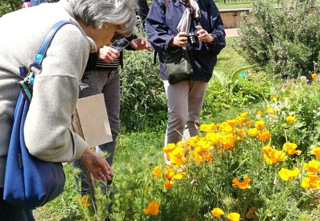 Lione, Parc Gerland - orto botanico didattico