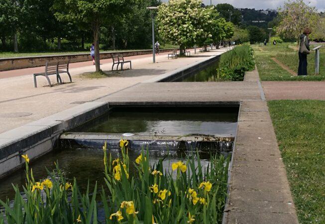 Lione, Parc Gerland - vasche e specie vegetali d'acqua