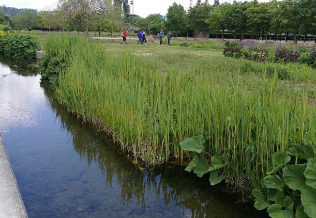 Lione, Parc Gerland