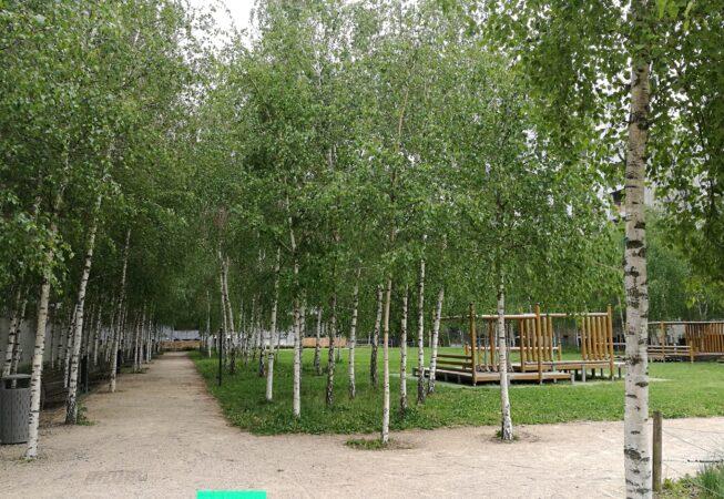 Piazza verde nel quartiere de la Confluence, Lione