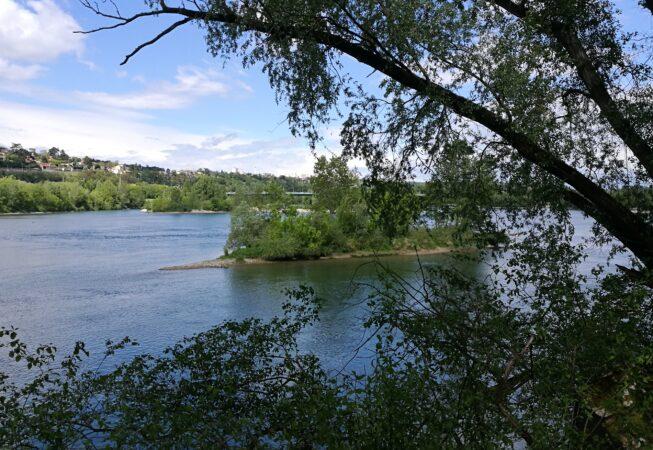 Parc de la Feyssine, Villeurbanne. Isola sul fiume Rodano.
