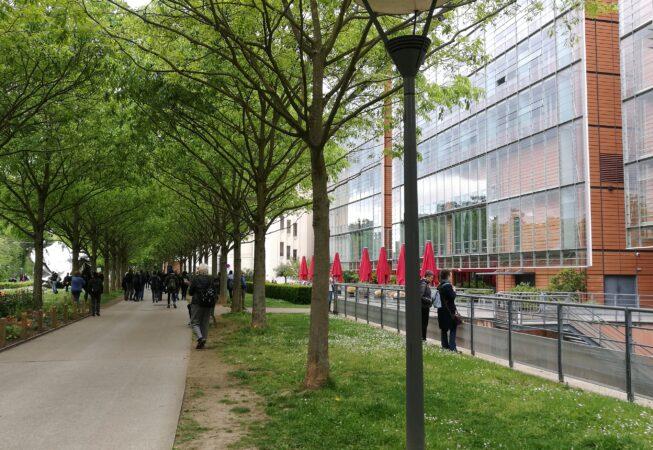 La Cité Internationale, le architetture di Renzo Piano a Lione. Lato verso il Parc de la Tête d'Or.