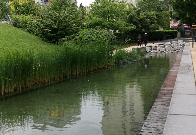 Vasca con specie acquatiche nel Jardin de la Caserme de Bonne, Grenoble.