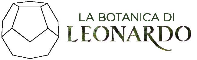 LA BOTANICA DI LEONARDO, a Firenze fino al 15/12